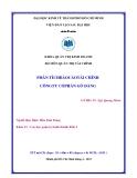 Tiểu luận: Phân tích báo cáo tài chính công ty cổ phần Gò Đàng