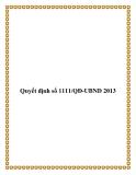 Văn bản số 1111/QĐ-UBND