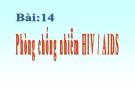 Bài giảng Phòng, chống nhiễm HIV AIDS - Giáo dục công dân 8 - GV:Q.Ý