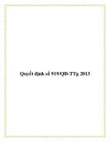 Quyết định số 919/QĐ-TTg 2013