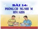 Bài giảng GDCD 8 bài 14: Phòng, chống nhiễm HIV/AIDS
