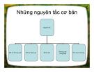 Bài giảng Những nguyên tắc cơ bản trong luật thương mại quốc tế