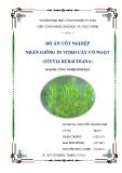 Đồ án tốt nghiệp: Nhân giống in vitro cây cỏ ngọt (stevia rebaudiana)