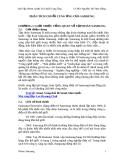 Tiểu luận: Phân tích chuỗi cung ứng của Samsung