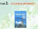 Bài giảng Tiếng Anh 12 Unit 2: Cultural diversity