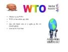 Bài giảng WTO là gì?