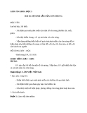 Bài 56: Sự sinh sản của côn trùng - Giáo án Khoa học 5 - GV:N.T.Sỹ