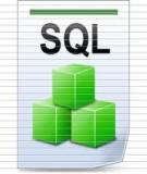 Ngôn ngữ truy vấn có cấu trúc (SQL)