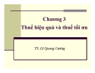Bài giảng Phân tích chính sách thuế: Chương 3 - Ts. Lê Quang Cường