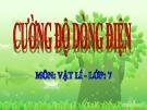 Bài giảng Cường độ dòng điện - Vật lý 7 - GV. H.Đ.Khang