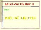 Bài giảng Kiểu dữ liệu tệp - Tin học 11 - GV.L.B.Kiều