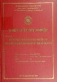 Khóa luận tốt nghiệp: Một số vấn đề đặt ra đối với việc thực thi luật đầu tư Việt Nam năm 2005 sau khi Việt Nam gia nhập WTO