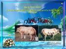 Bài giảng Thực hành Xác định nhiệt độ nước nuôi thủy sản - Công nghệ 7 - GV. L.M.Trang