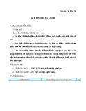 Giáo án bài Tin học và xã hội - Tin học 10 - GV.Tr.H.Phi
