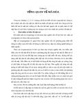 Tài liệu Kỹ thuật lập trình - Chương 6: Tổng quan về mã hóa