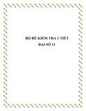 Đề kiểm tra 1 tiết Toán 11 - Đại số và Hình học