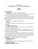 Giáo án Lịch sử 9 bài 8:  Nước Mĩ