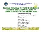 Tiểu luận: Giải pháp thâm nhập thị trường Hồng Kông dành cho gạo cao cấp của công ty TNHH MTV du lịch thương mại Kiên Giang