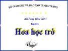 Slide bài Tập đọc: Hoa học trò - Tiếng việt 4 - GV.Lâm Ngọc Hoa