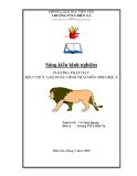 SKKN:  Phương pháp dạy kiến thức giải phẫu hình thái môn Sinh học 8