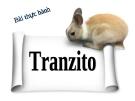 Bài giảng Công nghệ 12 bài 6: Thực hành- Tranzito