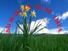 Bài giảng TNXH 1 bài 30: Trời nắng trời mưa