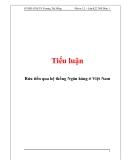 Tiểu luận: Rửa tiền qua hệ thống Ngân hàng ở Việt Nam