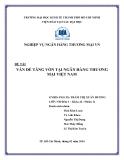 Đề tài: Vấn đề tăng vốn tại ngân hàng thương mại Việt Nam