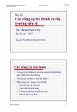 Bài giảng Tài chính phát triển: Bài 10 - Nguyễn Đức Mậu và Huỳnh Thế Du