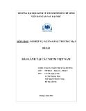 Đề tài: Bảo lãnh tại các ngân hàng thương mại Việt Nam