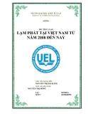 Tiểu luận: Lạm phát tại Việt Nam từ năm 2008 đến nay