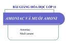 Bài giảng Hóa học 11 bài 8: Amoniac và muối amoni
