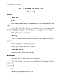 Giáo án Hóa học 12 bài 11: Peptit và protein (Chương trình cơ bản)
