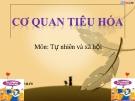 Slide bài Tiêu hóa thức ăn - Tự Nhiên Xã Hội 2 - GV.B.N.Kha
