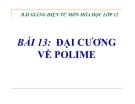 Bài giảng Hóa học 12 bài 13: Đại cương về polime