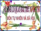 Slide bài Vệ sinh cơ quan bài tiết nước tiểu - Tự Nhiên Xã Hội 3 - GV.B.N.Kha