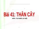 Slide bài Thân cây - Tự Nhiên Xã Hội 3 - GV.B.N.Kha