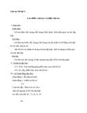 Giáo án Số học 6 chương 1 bài 16: Ước chung và bội chung