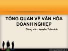 Bài giảng Tổng quan về Văn hóa doanh nghiệp - GV. Nguyễn Tuấn Anh