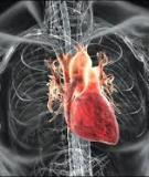 100 câu hỏi đáp tim mạch