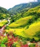 Chuyên đề tốt nghiệp: Một số giải pháp nhằm đấy mạnh hoạt động quảng cáo chương trình du lịch ra nước ngoài tại Trung tâm du lịch Vietnam Railtour