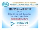 Tiểu luận: Phân tích mô hình doanh thu của công ty và website Hanhtrinhdeltaviet.edu.vn