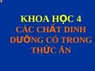 Bài 4: Các chất DD trong thức ăn- VT chất bột đường - Bài giảng điện tử Khoa học 4 - T.B.Minh