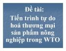 Tiểu luận:Tiến trình tự do hoá thương mại thương sản phẩm nông nghiệp trong WTO