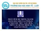 Tiểu luận: Phân tích hệ thống ngành hàng dầu gội của công ty Unilever Việt Nam dựa trên các quyết định về loại sản phẩm