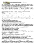 Đề thi thử ĐH môn Vật lý khối A đề số 14