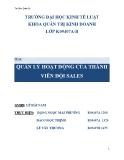 Tiểu luận: Quản lý hoạt động của thành viên đội Sales