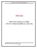 Tiểu luận: Phân tích và định giá cổ phiếu công ty cổ phần Đại Thiện Lộc