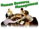 Tiểu luận: Thiết lập hệ thống tiền lương của doanh nghiệp