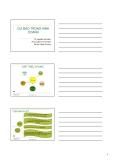 Bài giảng Quản trị sản xuất và dịch vụ: Chương 2 - Nguyễn Văn Minh